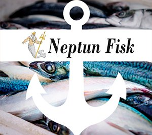 Neptun Fisk profil liten